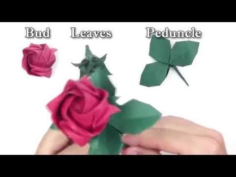Origami Rose Easy - Origami Tutorial - YouTube   360x480