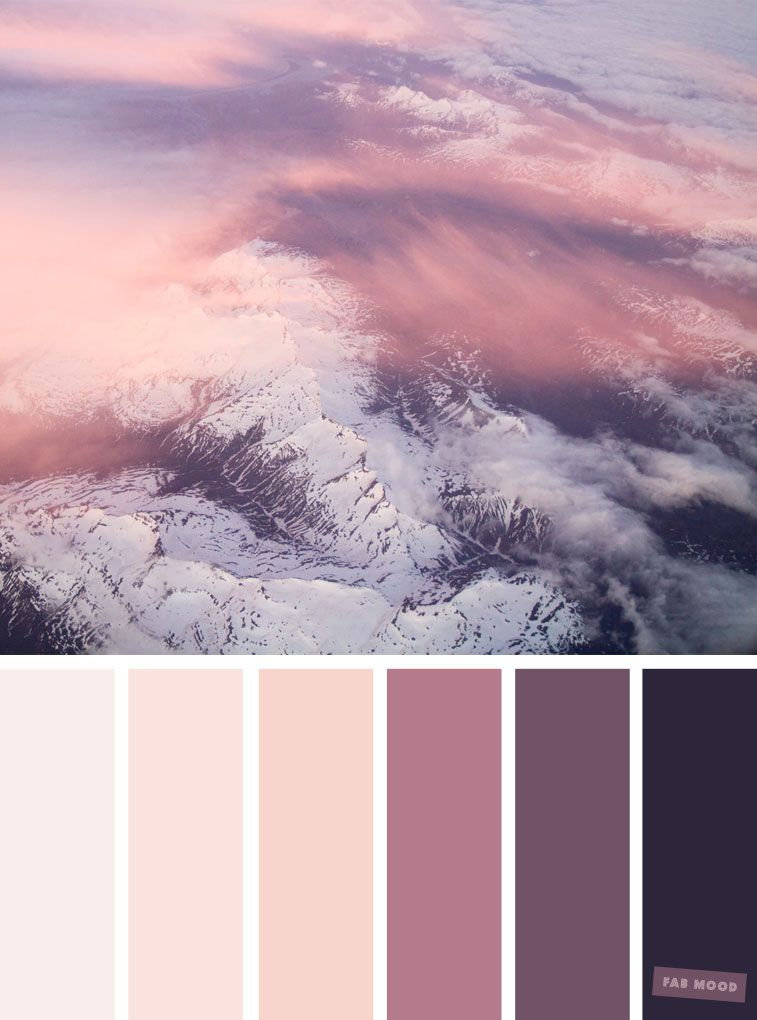 Blush tones : Pretty blush color schemes | Palette | Black ...