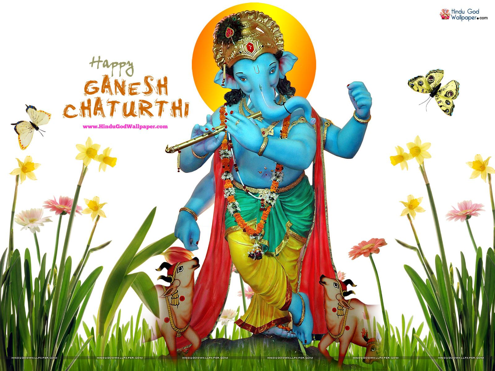 Ganesh Chaturthi Live HD Wallpapers Free Download