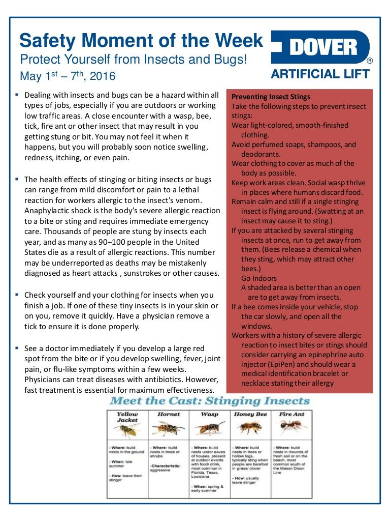 Protect Yourself from Insects and Bugs! Alberta Oil Tool's