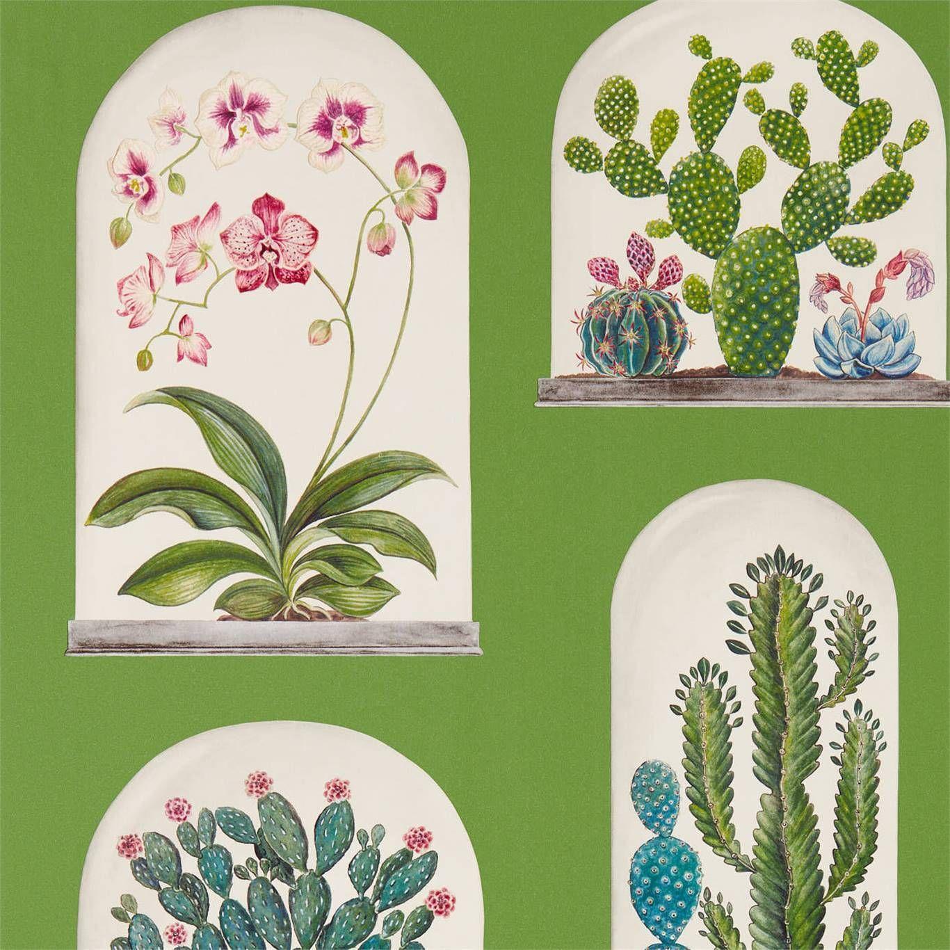 Sanderson Terrariums Botanical Green Multi Wallpaper 216656 Living Room In 2019 Glass House Wallpaper Fabric Wallpaper