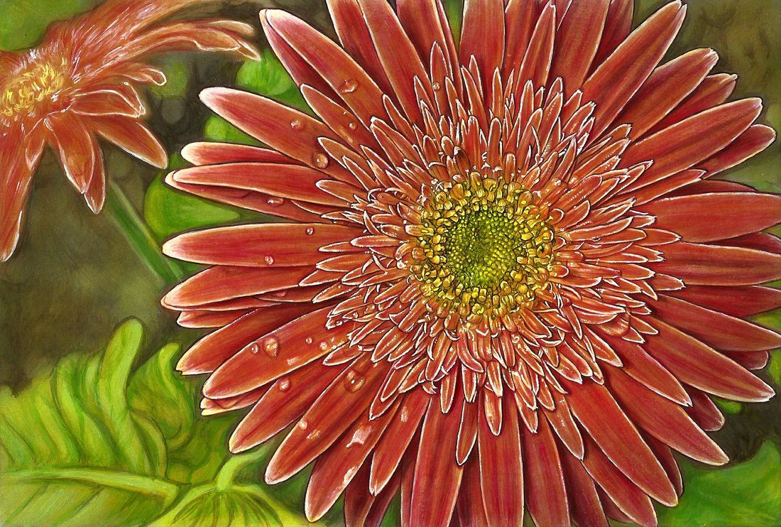 View The Different Ways People Have Colored Gerbera Daisy Flower From Beautiful Nature Grayscale Adult ColoringColoring BooksColoring