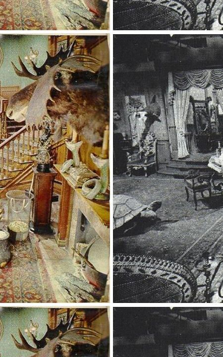 The Addams Family S Living Room Was Pink Addams Family House