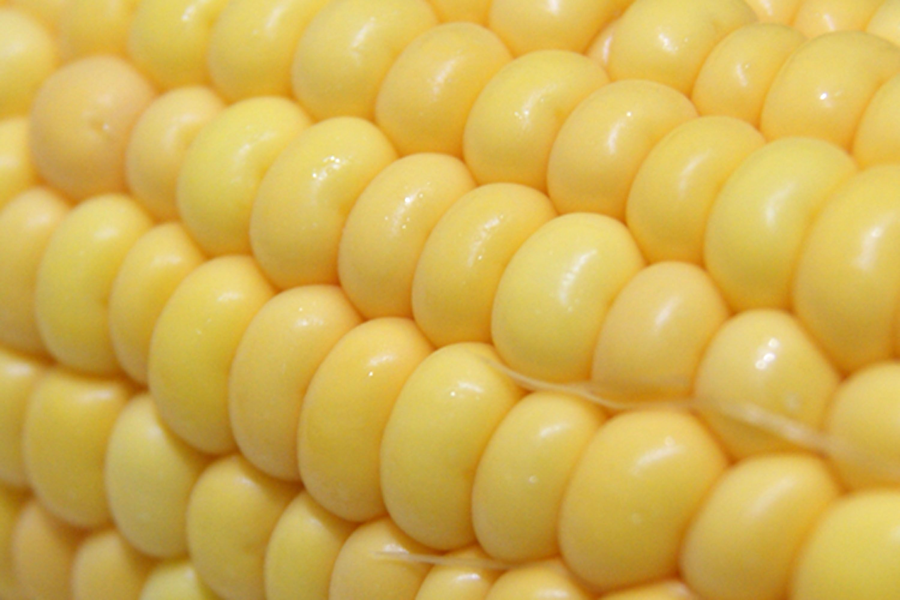 how to cook whole corn on the cob