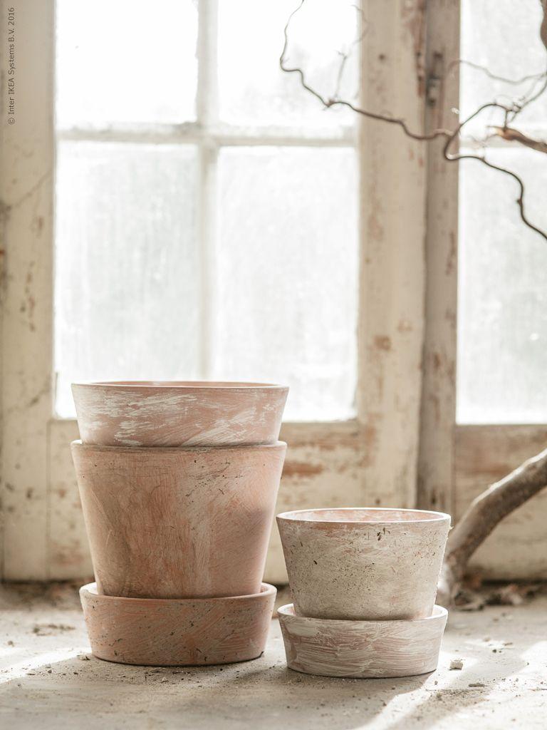 Ici Les Pots En Terre Cuite IngefÄra D Ikea Ont été Patinés Avec Du Plâtre On Peut Utiliser Un Pinceau Ou De La Mousse Pour Varier Nuances