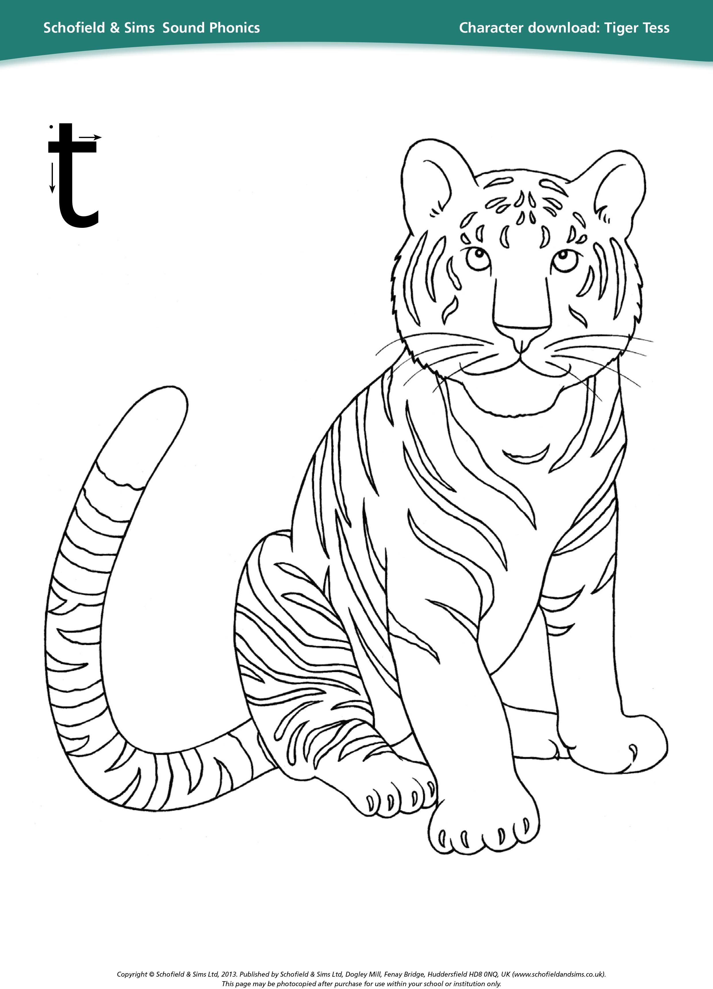 Tiger Tess Sheet For Learning Phonics Education Ks1