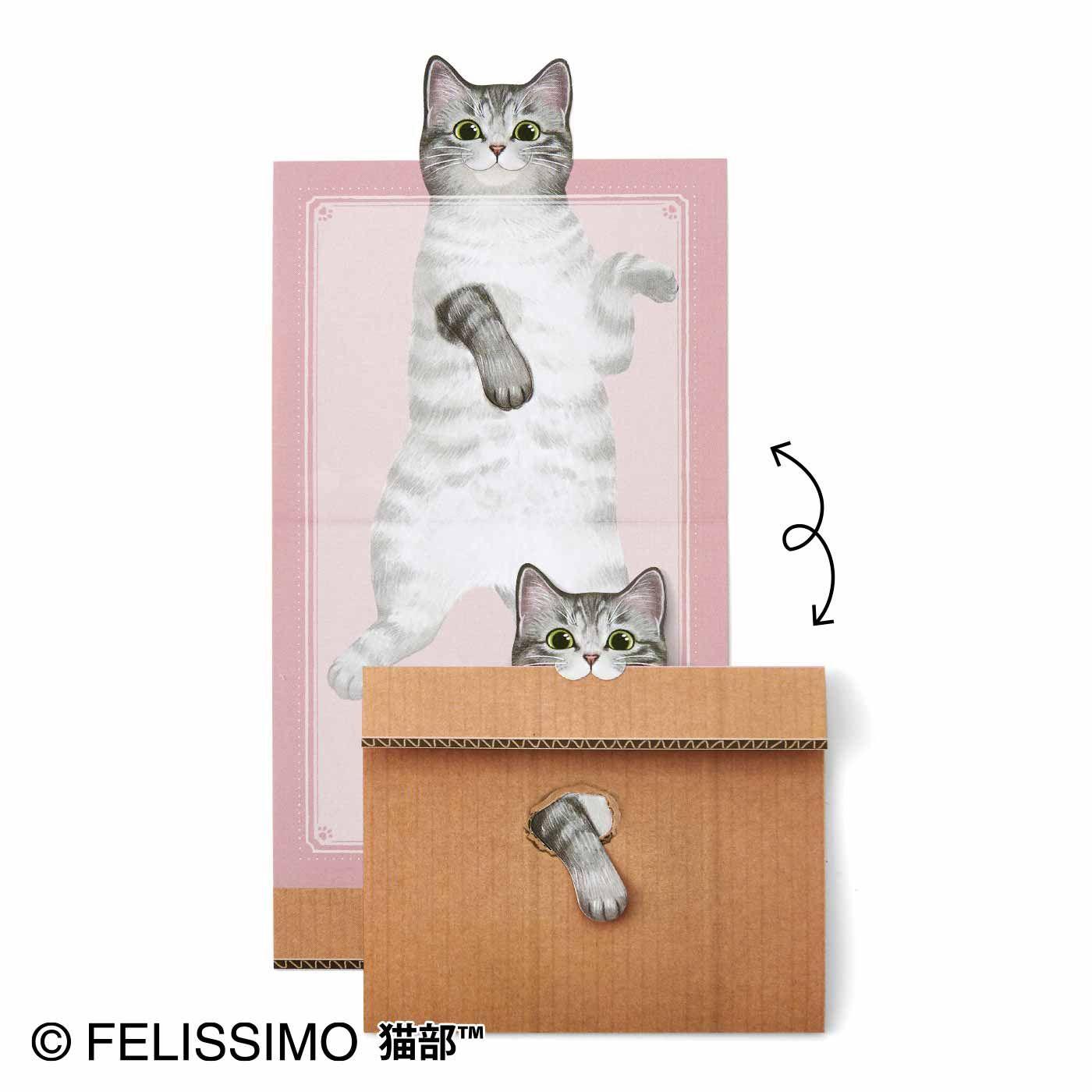 遊んでいただけるんですか 猫のメッセージメモの会 箱から前足を出して 猫さんがこちらを見て 遊ぼ と誘ってくれている という 猫好きなら心が踊るあのシーンを再現したメモです はむっと箱をくわえてメモを閉じる ひげ袋のふくらみもたまりません