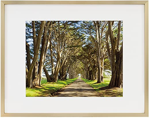 Amazon Com Golden State Art Picture Frame Gold Aluminum Shiny Brushed Fit Photo With Ivory Mat Or In 2020 Frames On Wall Photo Wall Gallery 11x14 Picture Frame