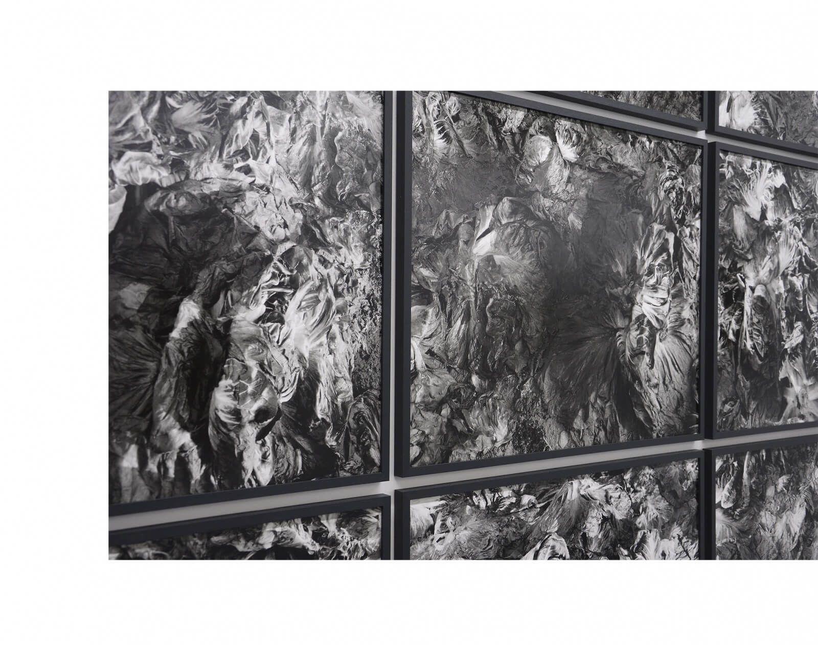 "<p>""Neun Bilder""<br /> January 10th – February 28th<br /> Galerie de Roussan, Paris<br /> <a href=""http://www.galeriederoussan.com"" target=""_blank"">www.galeriederoussan.com</a></p> <p></p> <p>Radicchio Rosso I-IX (detail)<br /> nine gelatin silver prints<br /> 54,5 x 62 cm each</p>"