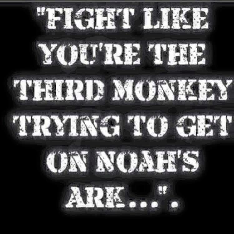 Third Monkey Funny Quotes Words Inspirational Quotes
