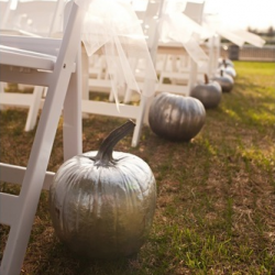 Love The Idea Of Pumpkins For A Fall Wedding Wish I Would Have Thought Of That Danielle Wall Pumpkin Wedding Silver Pumpkins Diy Wedding Gifts
