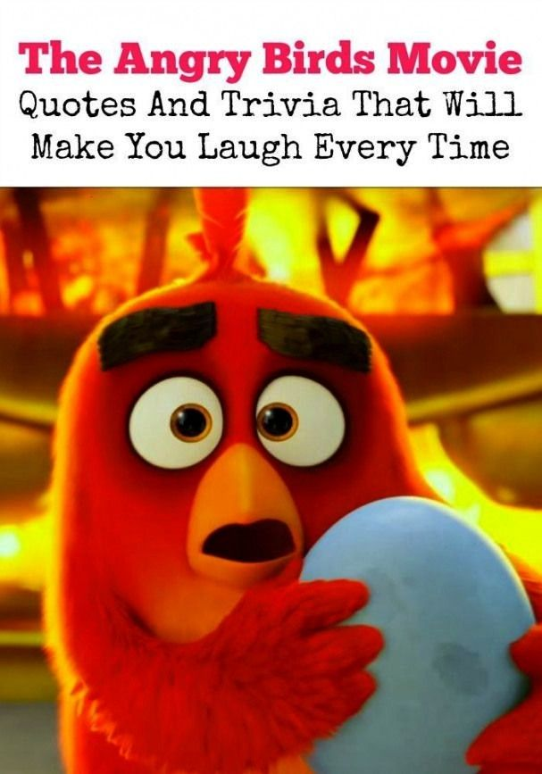 Angry Birds Movie Quotes And Trivia That Will Make You LaughThe Angry Birds Movie Quotes And Trivia That Will Make You Laugh THE SECRET LIFE OF PETS 2 is the perfect movi...
