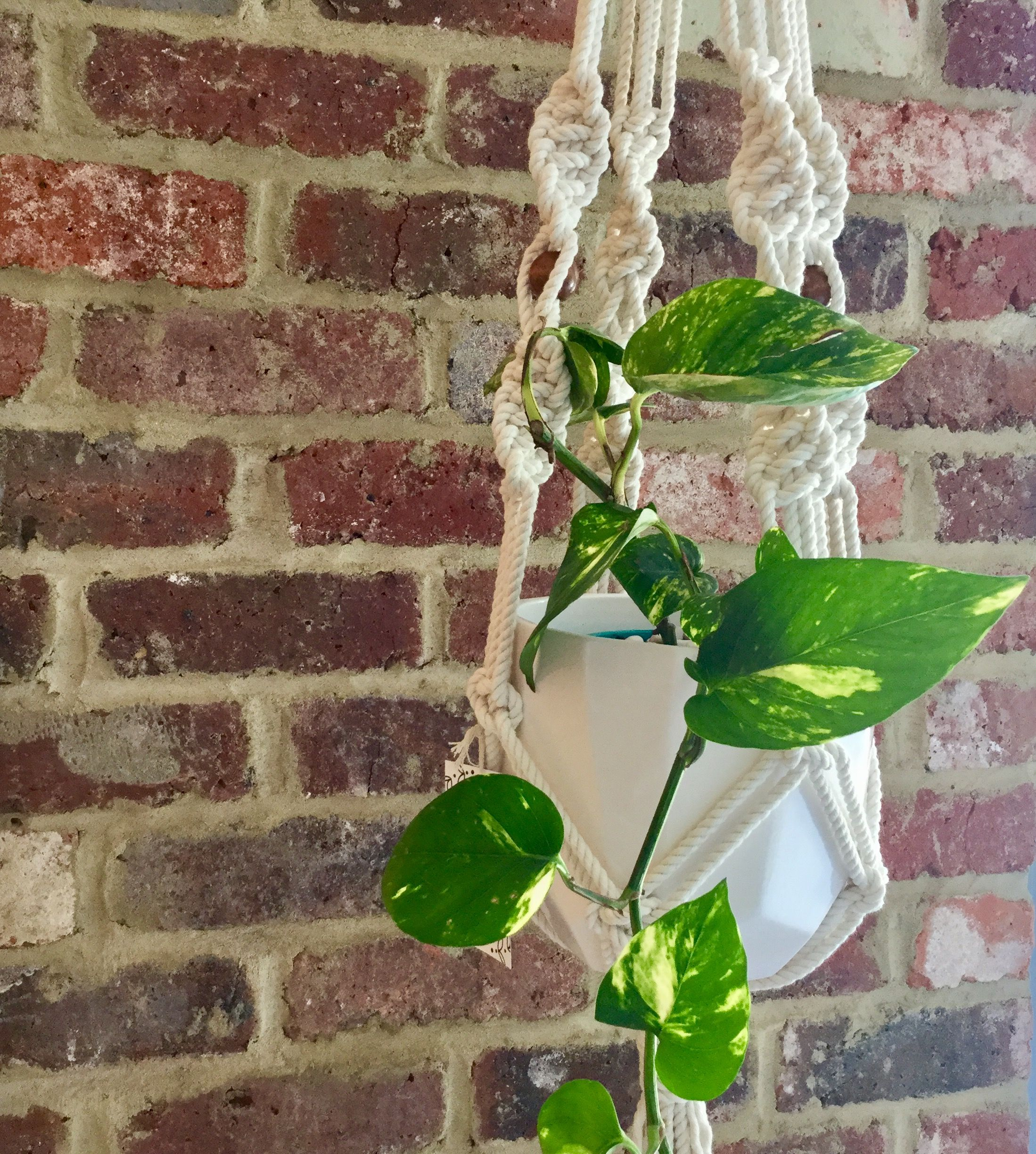Macrame Plant Hangers, Devil, Ivy, Home Decor, Homemade Home Decor,