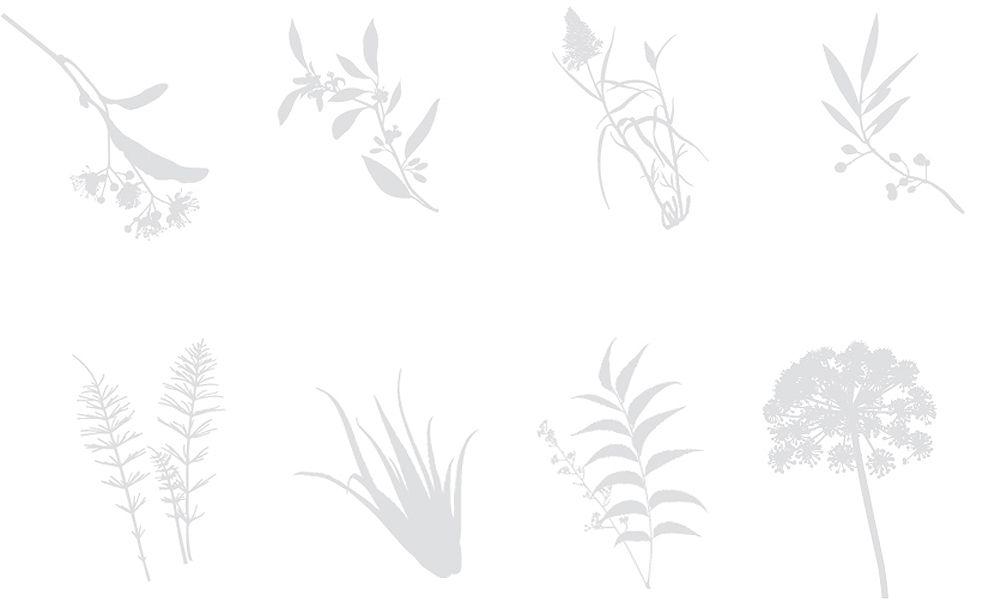 modularplus / illustrationen
