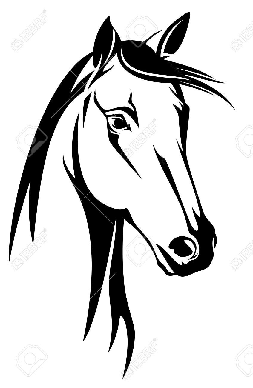 Horse Clipart Black And White : horse, clipart, black, white, Horse, Black, White, Design, Drawing,