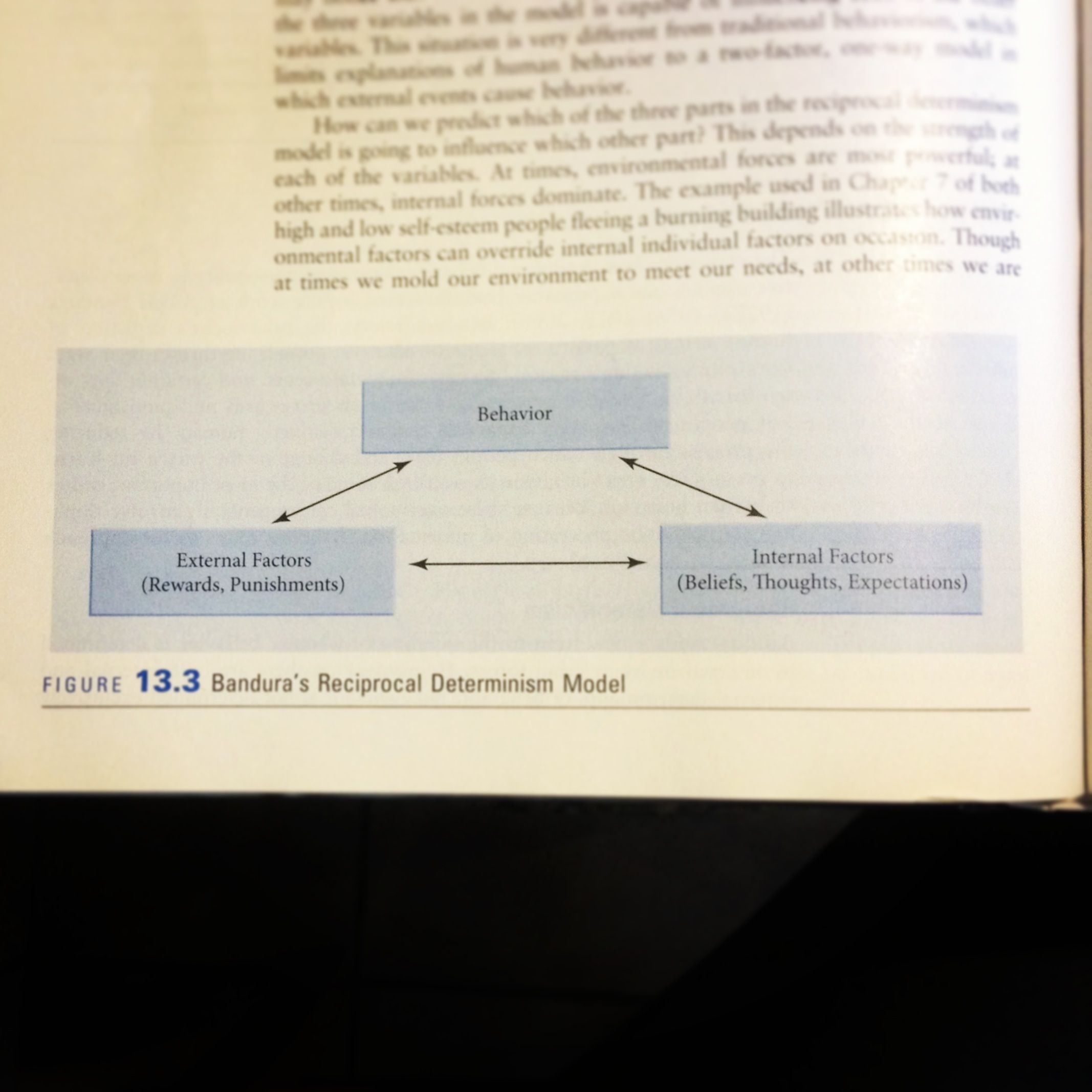 Bandura Social Learning Theory Diagram 1985 Ford F150 Fuse Box 39s Reciprocal Determinism Behavior
