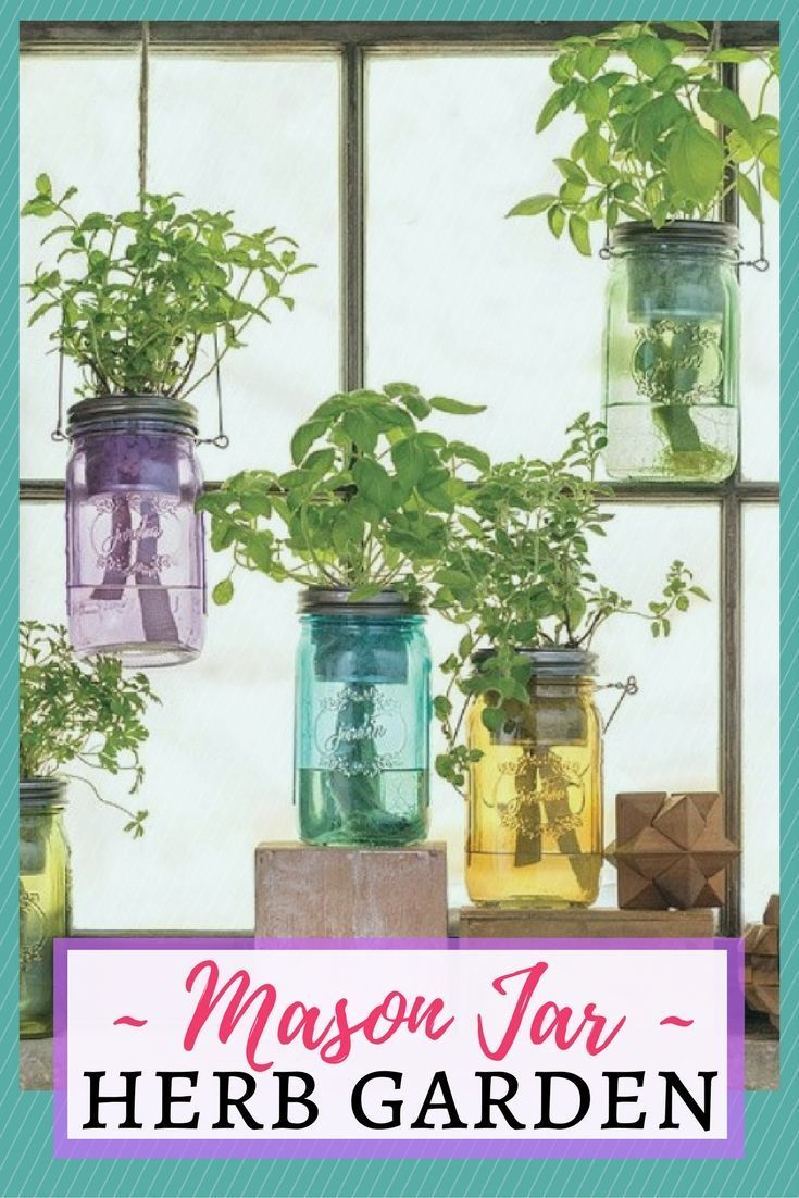 Mason Jar Indoor Herb Garden Kit These Vintage Inspired Planters Use A Pive Hydroponic