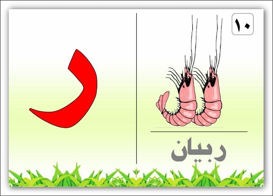 الحروف الهجائية كلمة وصورة Arabic Alphabet Letters Learning Arabic Alphabet Flashcards