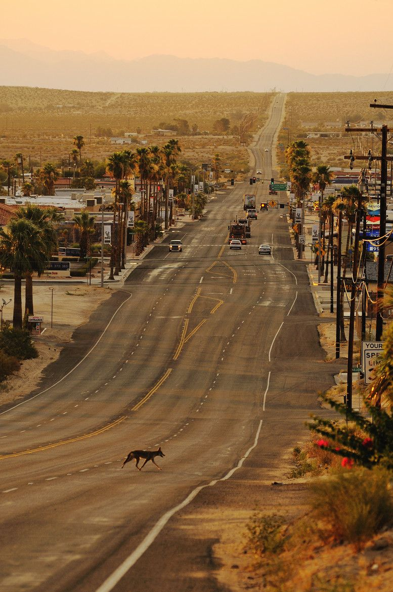 Twentynine Palms, San Bernardino in the Mojave Desert of ...