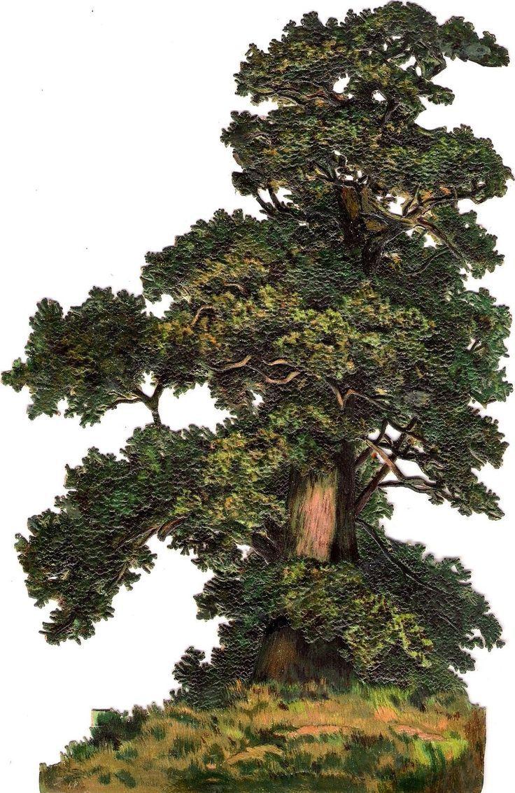 Oblaten Glanzbild scrap die cut  chromo  Baum XL  22,8 cm  tree  Eiche oak  de.picclick.com