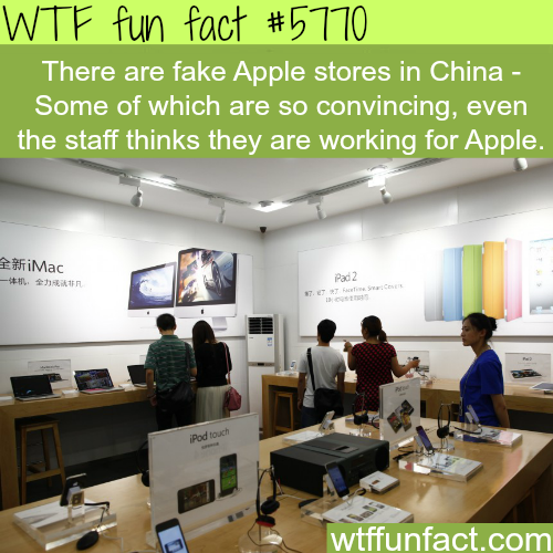 Fake Apple stores in China - WTF fun facts