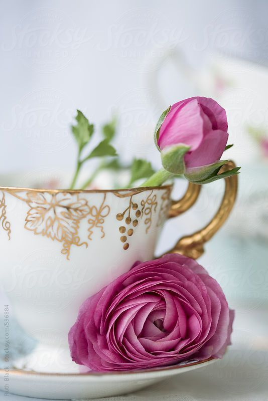 Ranunculus flowers in a vintage teacup by Ruth Black - Stocksy United - Royalty-Free Stock Photos #flowers