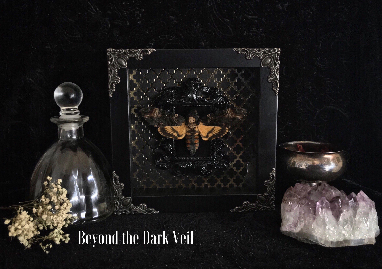 Gothic decor Wallpaper - Deaths Head Moth Shadow Box, Butterfly