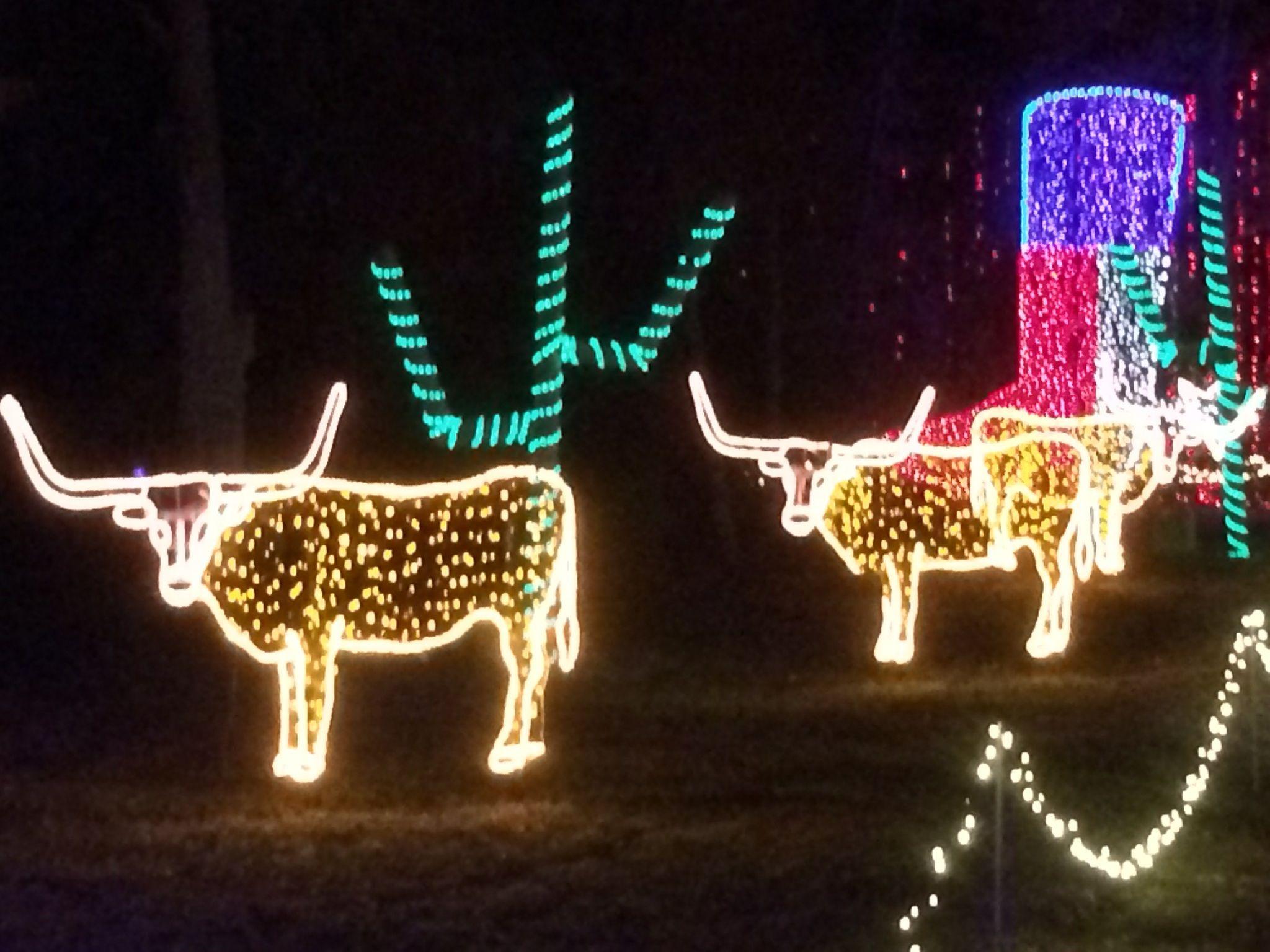 merry longhorn christmas