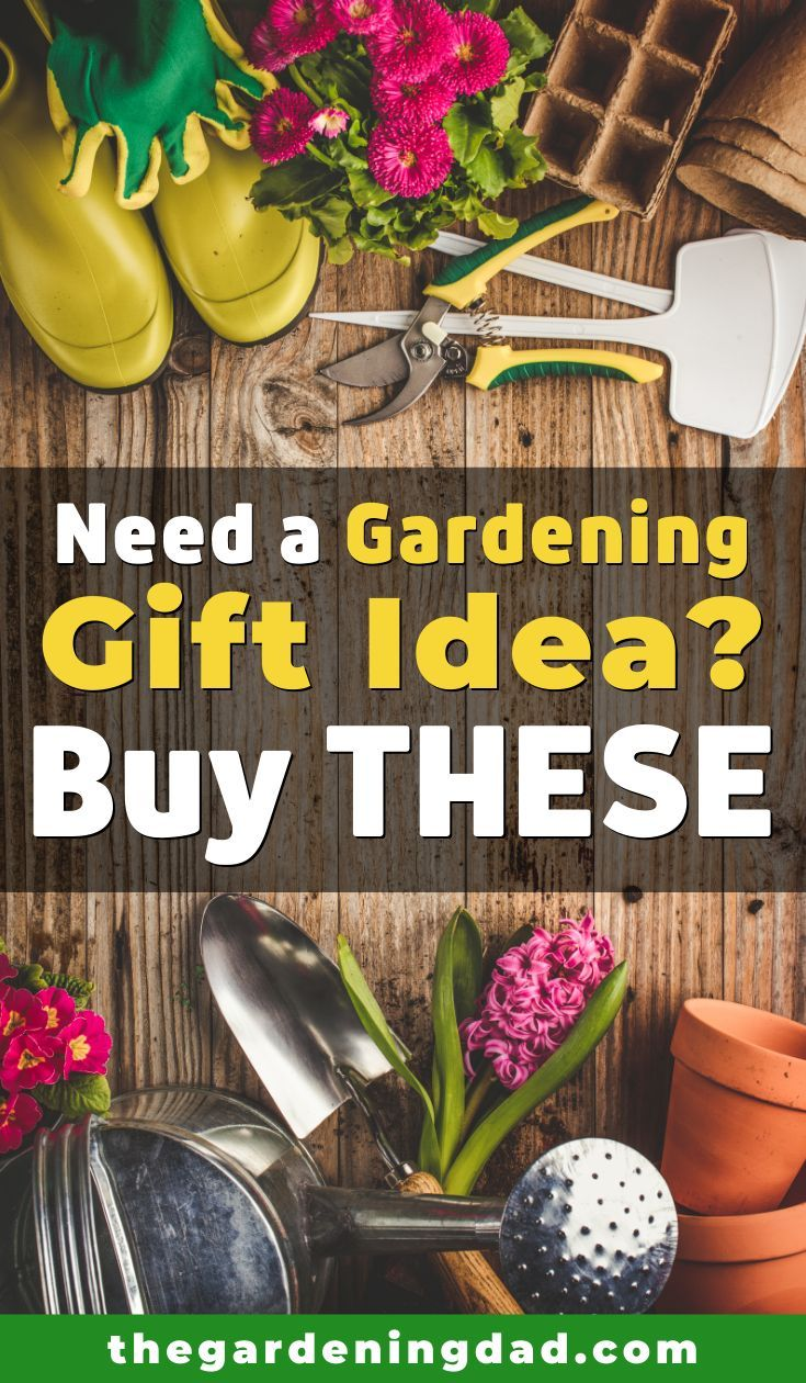 33 unique gardening gifts for dad mom the gardening