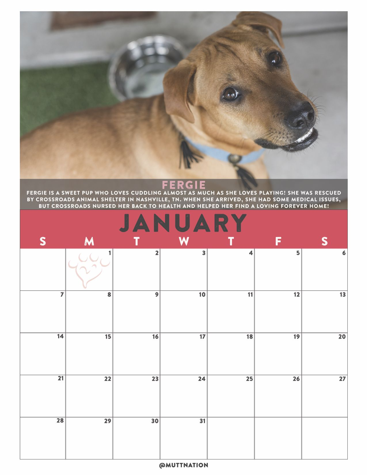 Muttnation Diy Blank Calendar Printables