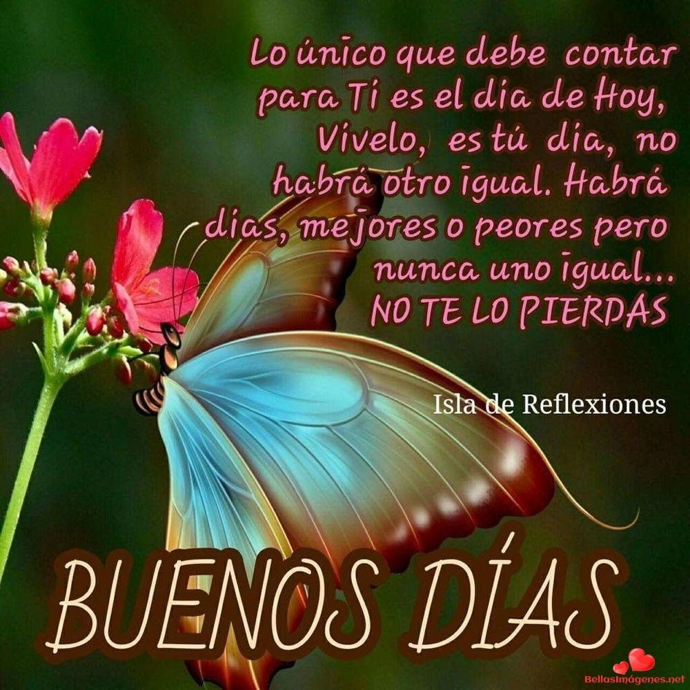 Hola Chiquita Buenos Días Espero Que Hayas Amanecido Mucho Mejor