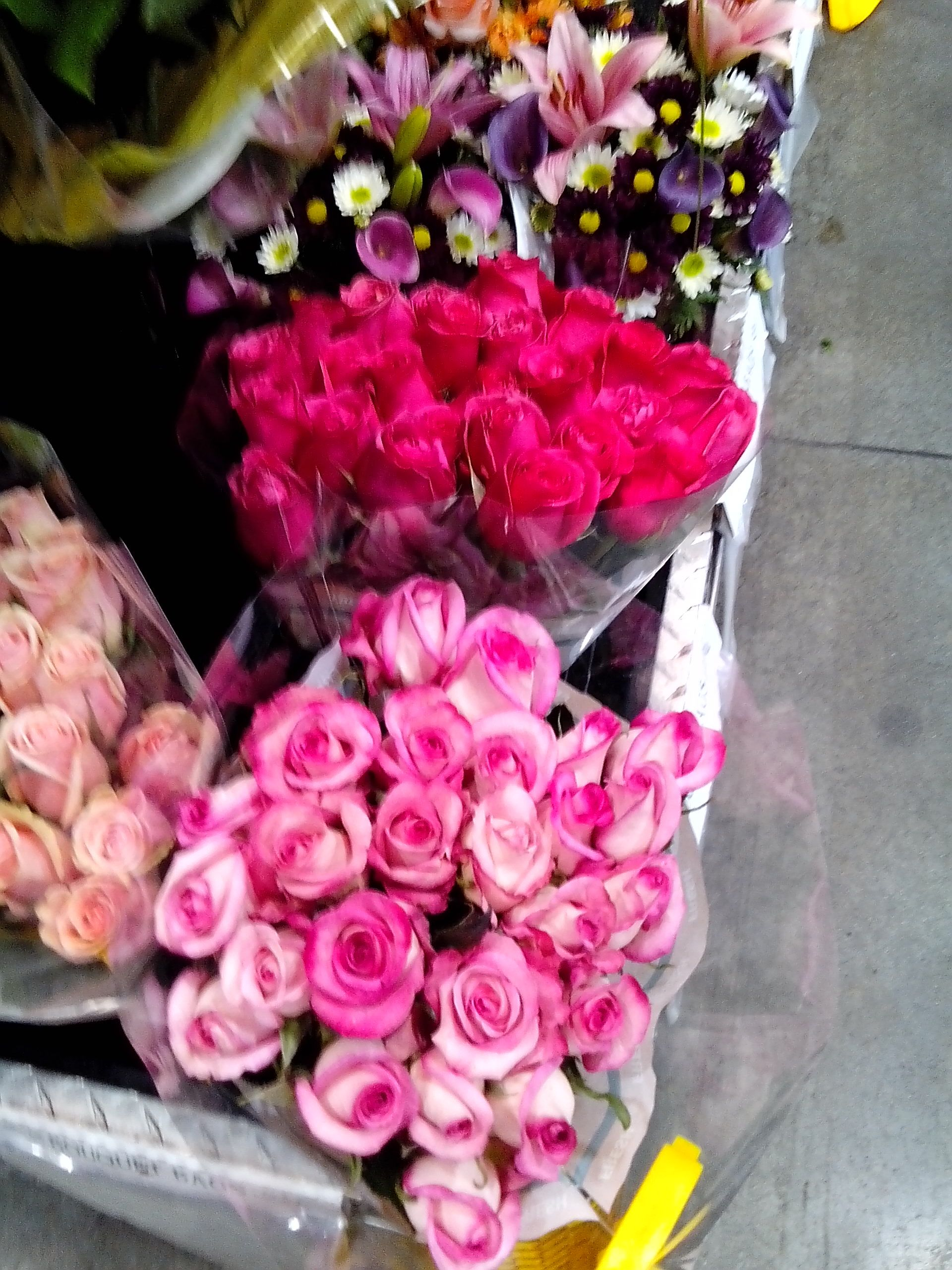 Pink roses from Costco - Rainforest Alliance Certified. $16.99 ...
