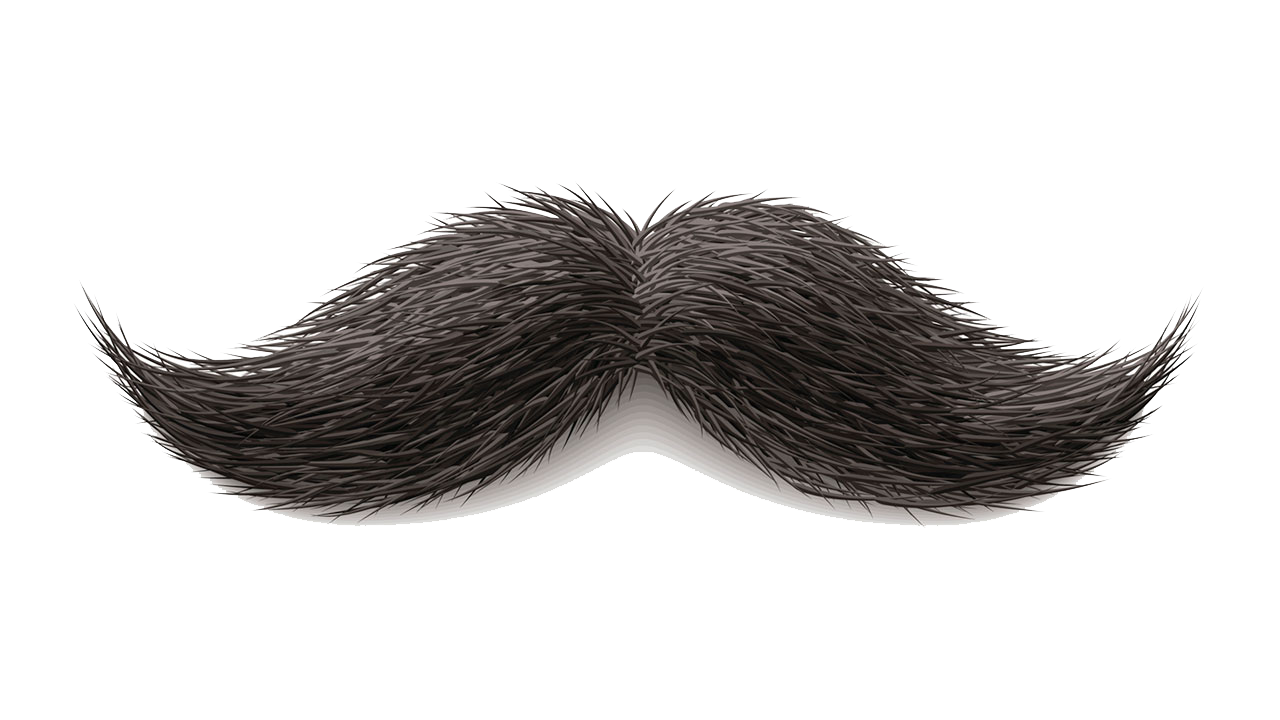 نتيجة بحث الصور عن Real Mustache Png Corpo Humano Arte Do Corpo Humano Mascara