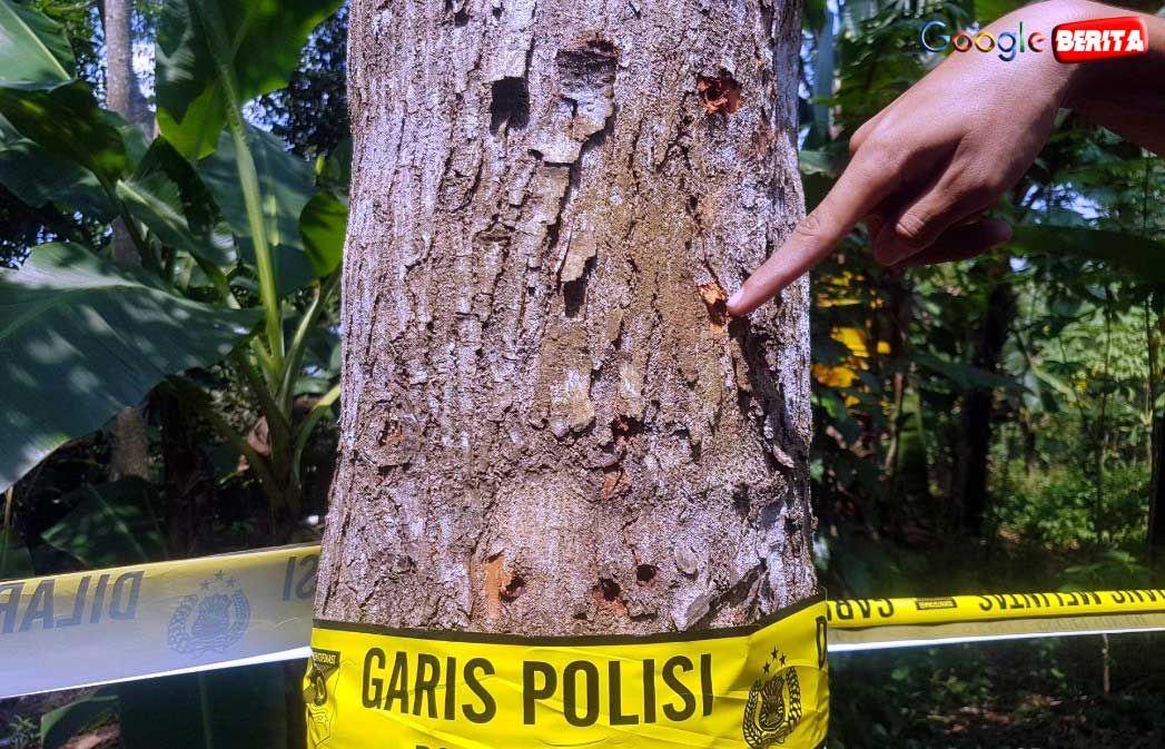 Warga Kampung Sampora Rt 3 Rw 6 Desa Bojong Raharja Cikembar Kabupaten Sukabumi Jawa Barat Kaget Dengan Penangkapan Dan Penggeledah Memanah Pedesaan Google