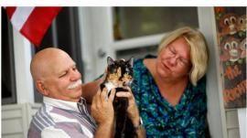 Una gata recorrió 300 km para reencontrarse con sus dueños - Cachicha.com