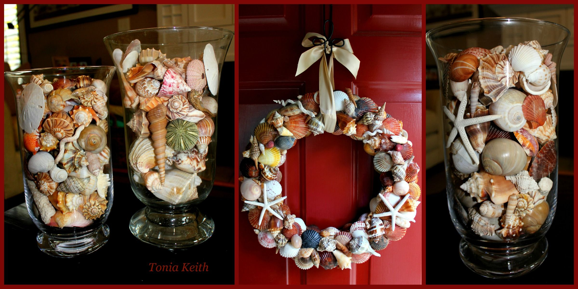 Things to do with seashells crafts pinterest - Things to do with seashells ...
