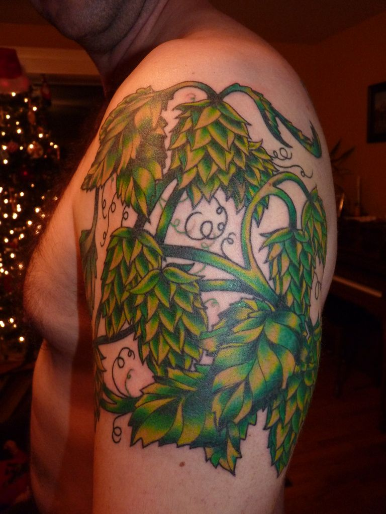 images for u003e hops vine tattoo hops pinterest vine tattoos rh pinterest com Hops Craft Beer Clip Art Hops Drawing
