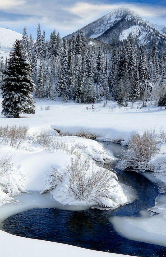 le paysage d 39 hiver en 80 images magnifiques photos hiver pinterest paysage. Black Bedroom Furniture Sets. Home Design Ideas