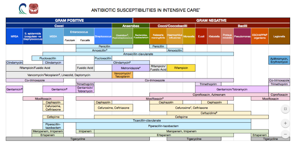 Work related image by Lady Poppy Antibiotics chart