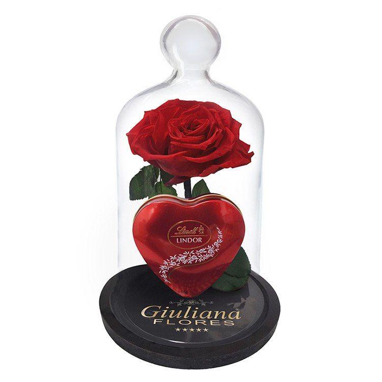 Rosa Encantada Com Caixa De Chocolate Lindt Caixa De Chocolate