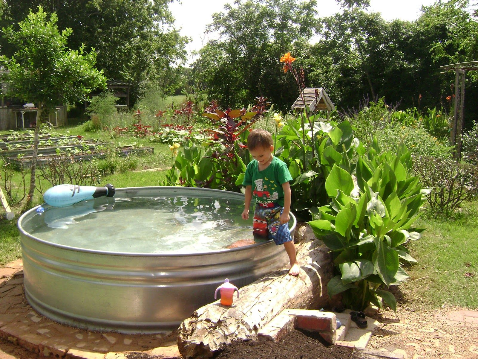 Galvanized metal trough as a pool or pond ideas for new for How to make a pool out of a stock tank