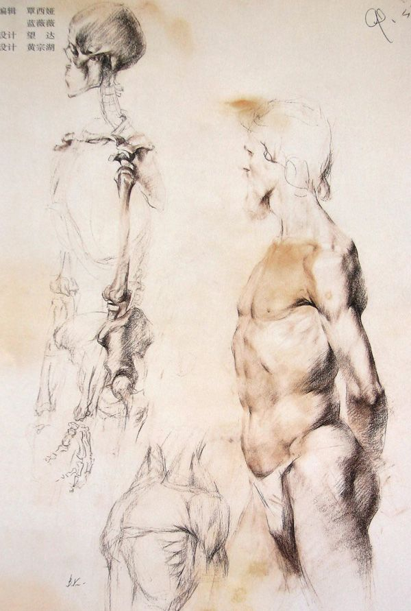 Figurative Drawings Sketchbook ,Artist Study Resources for Art ...