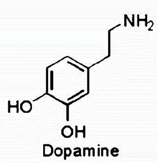 Causes Of Drug Addiction