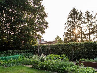 Anbauplan und Gartenkalender für das Gemüsebeet auf 16qm #beetanlegen