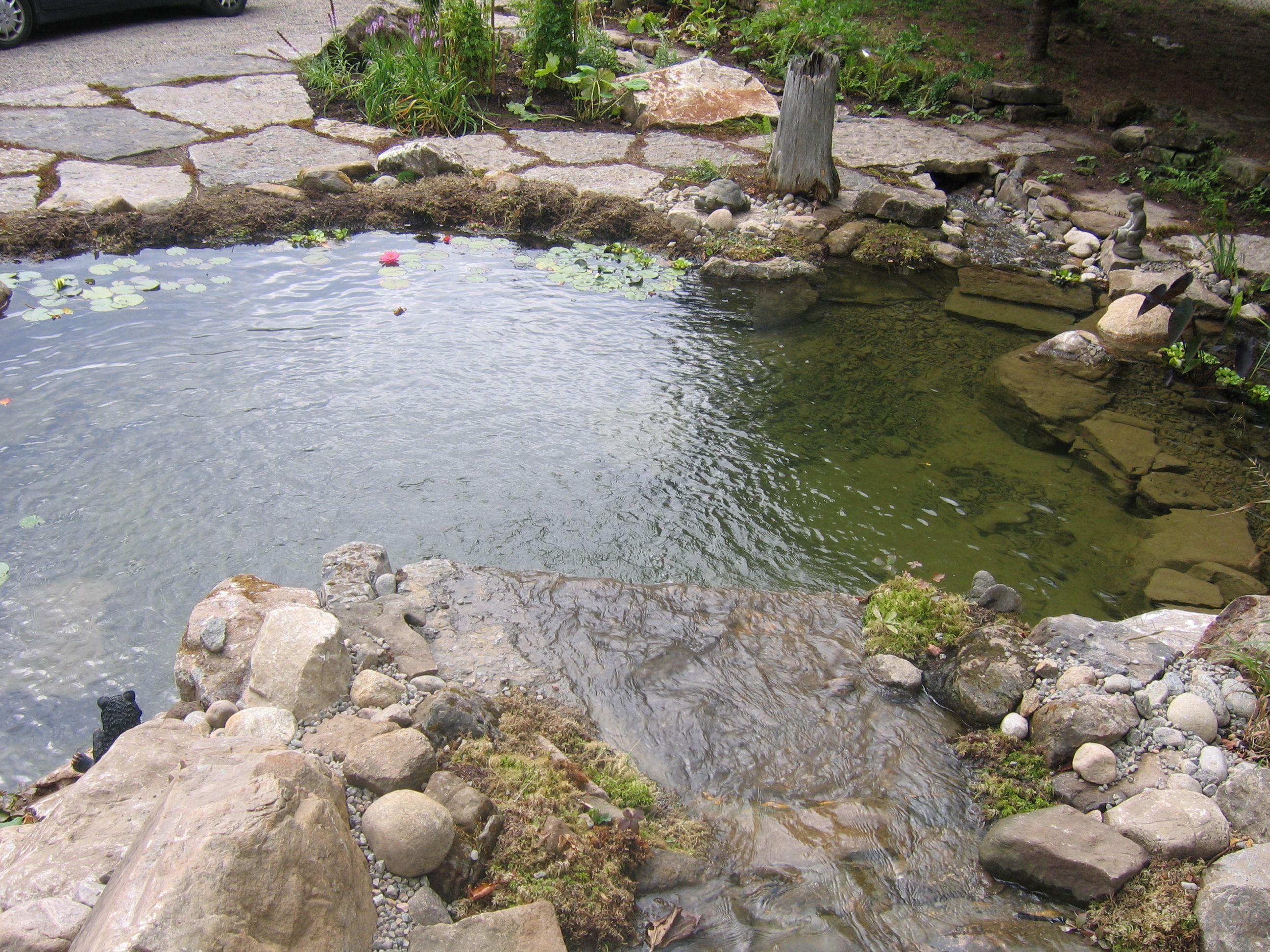Bassin d 39 eau construit au qu bec il y a quelques ann es for Amenagement paysager