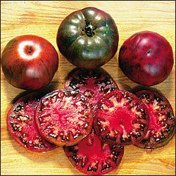 Tomato Black Krim Heirloom Open Pollinated 25 400 x 300