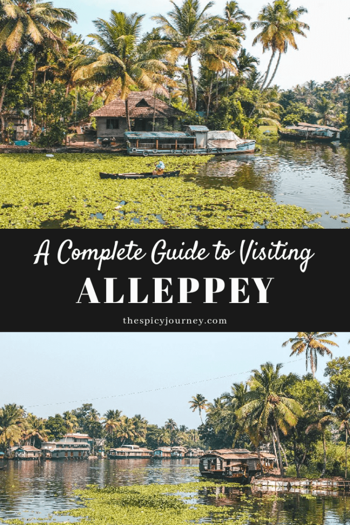 A Cheaper Alternative Guide to the Alleppey Backwaters - The Spicy Journey