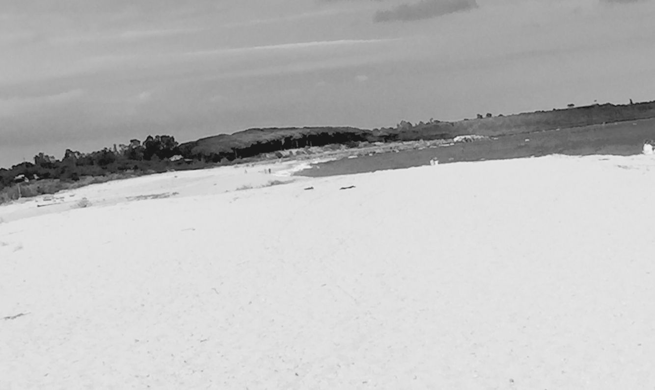 #mare#viancoenero#raffaellatarchini