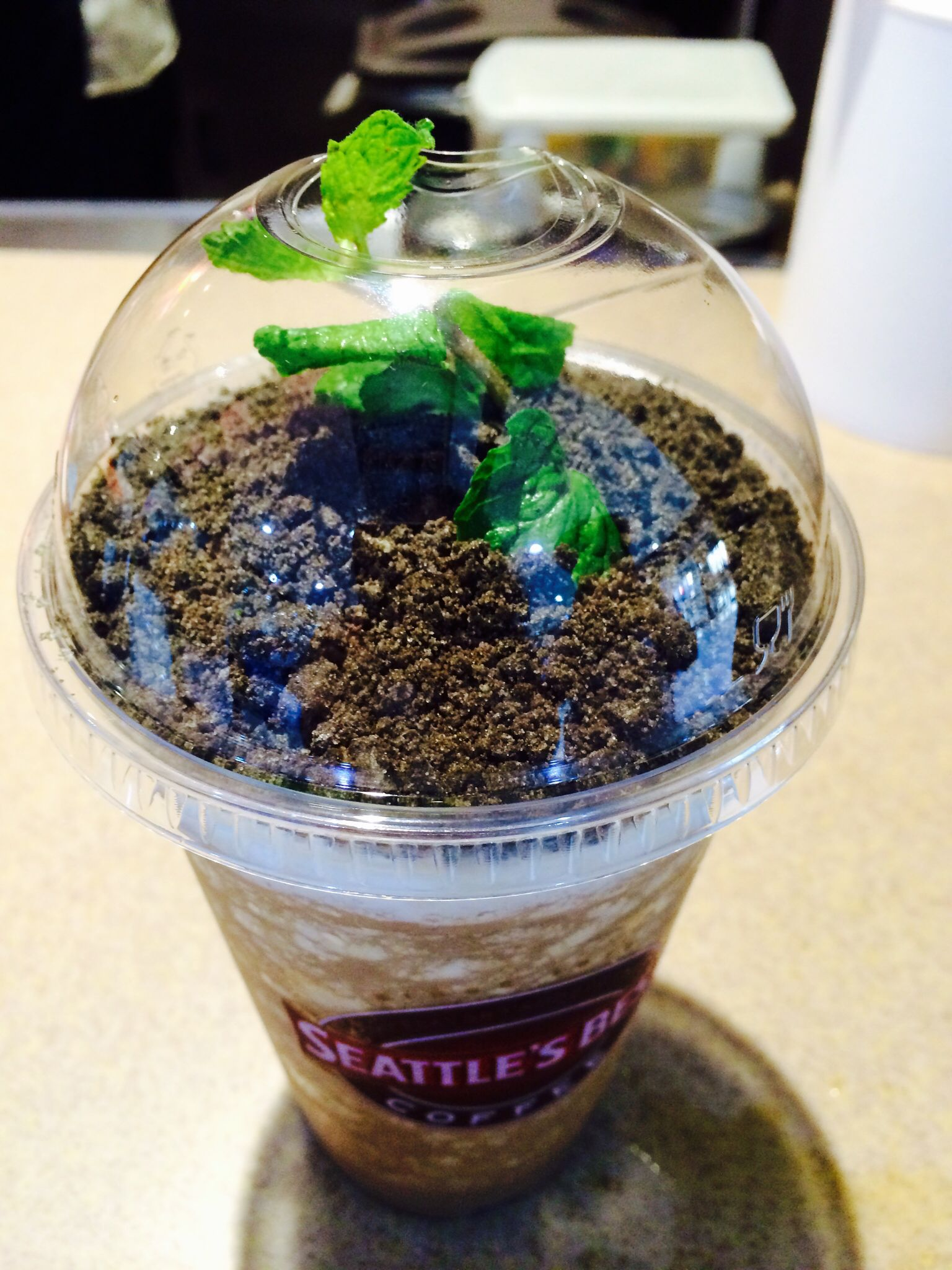 mint choc seattle's best coffee boracay island