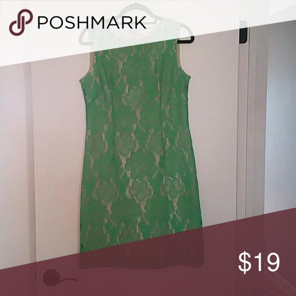 NY&CO light green lace overlay dress Knee-length light green lace over tan. New York & Company Dresses Midi